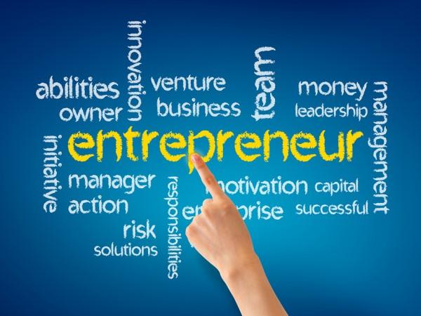 entrepreneurs essay
